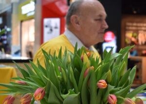prodej tulipánů